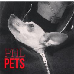 cropped-suki-phl-pets-v21.png